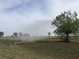 Irrigazione di soccorso